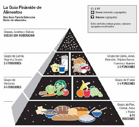 Foodguide additionally Grains Clipart Ex le Go Food as well Piramide besides Food Pyramid Mpx moreover . on healthy eating pyramid